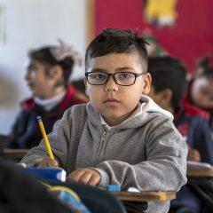4 resultados que mostram como a educação partidariamente cooptada tem ido de mal a pior